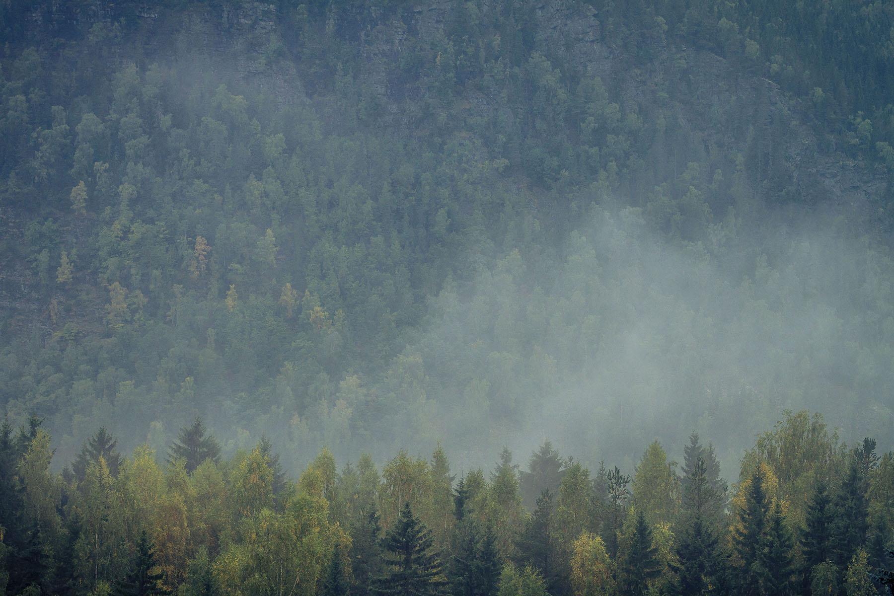 Dunst über Hafjell, nachdem es in der Nacht zuvor viel geregnet hatte. Die Strecke war dementsprechend rutschig.