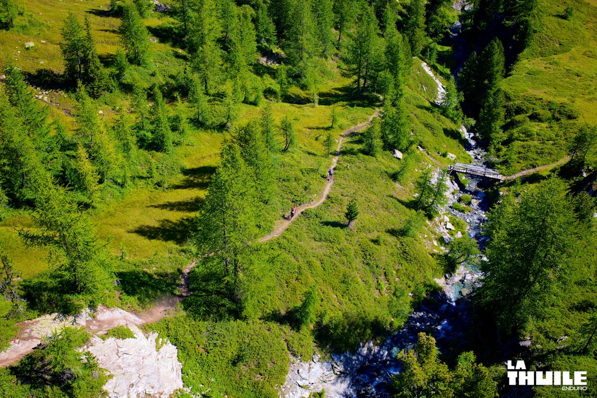 Flowige Trails durch die Wälder.