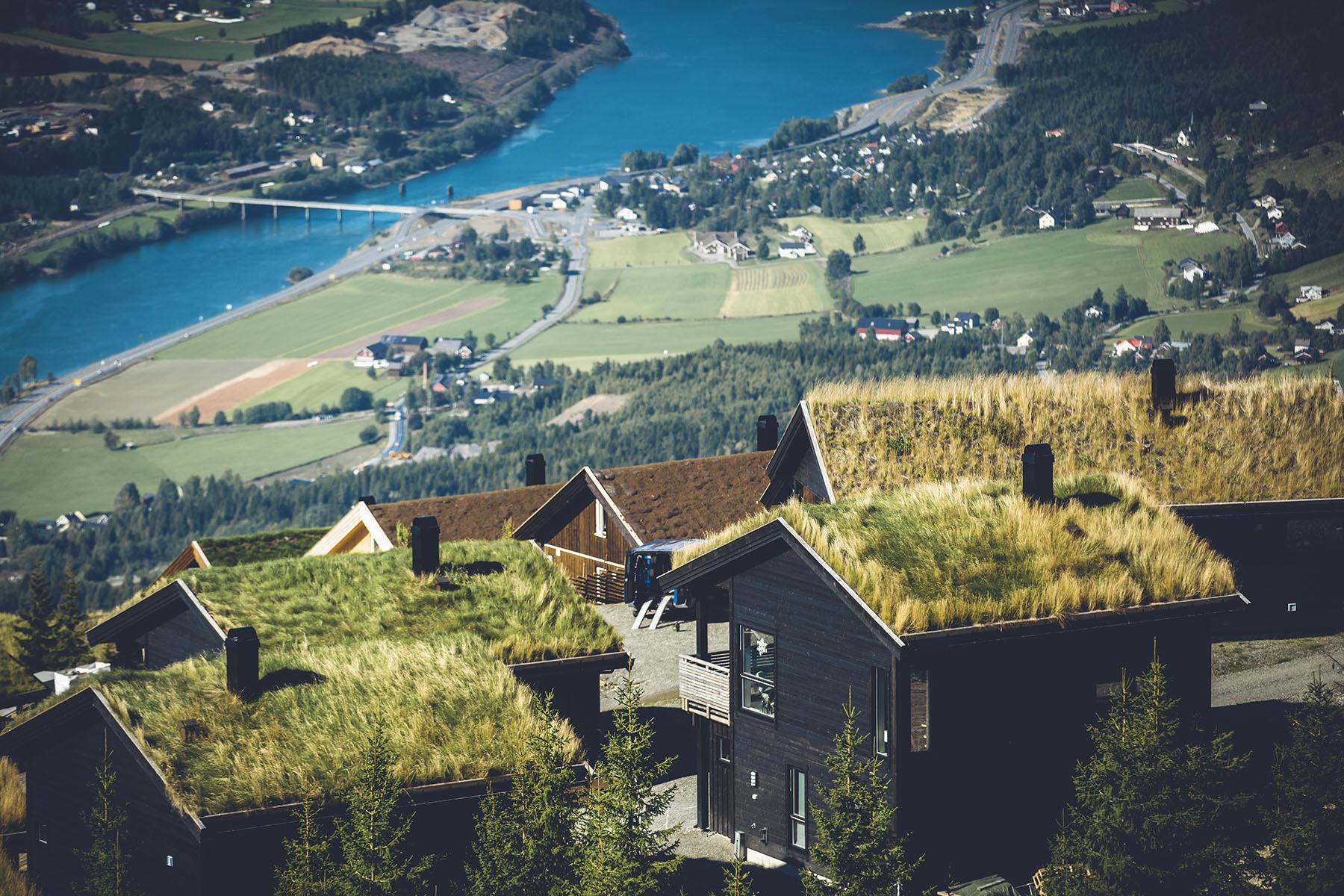 Gras auf den Dächern Norwegens