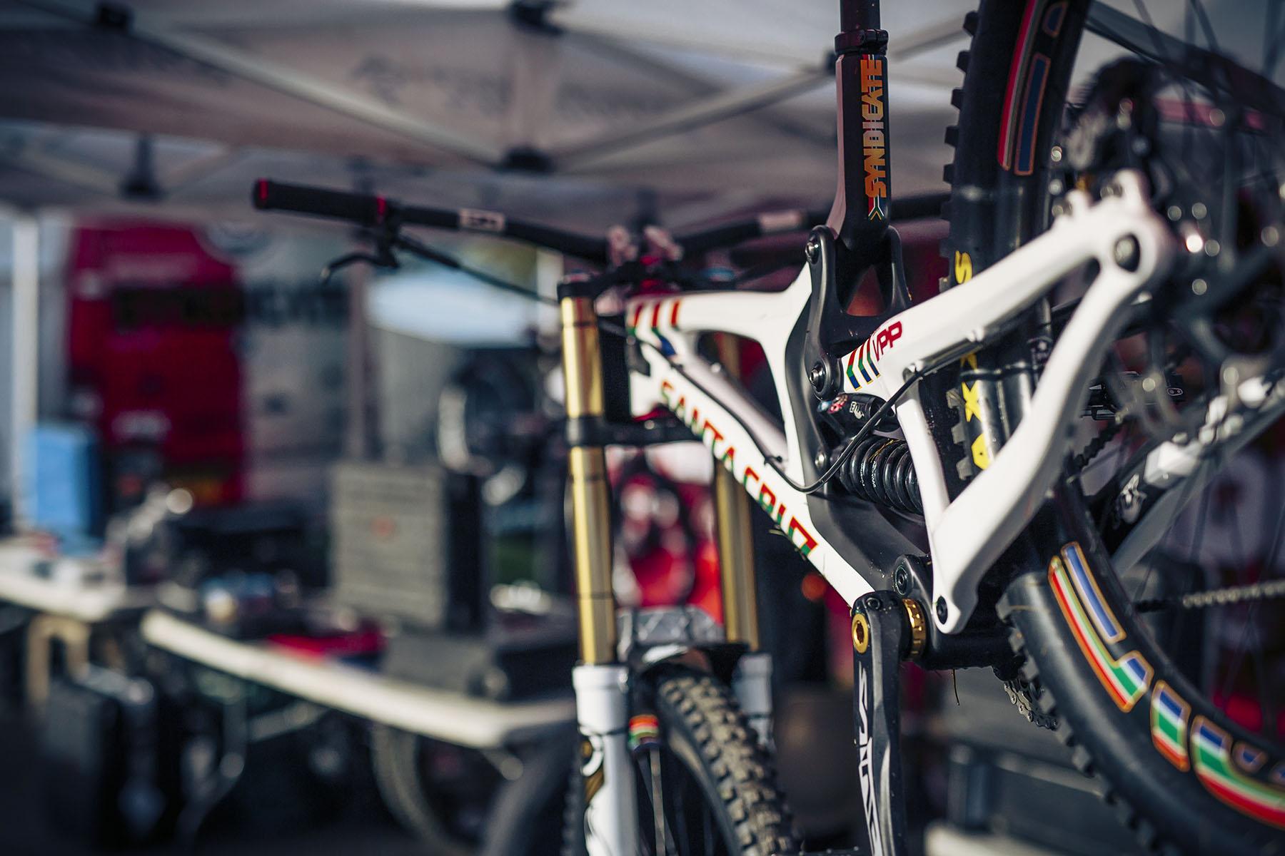 Überall schick lackierte World Champs bikes.