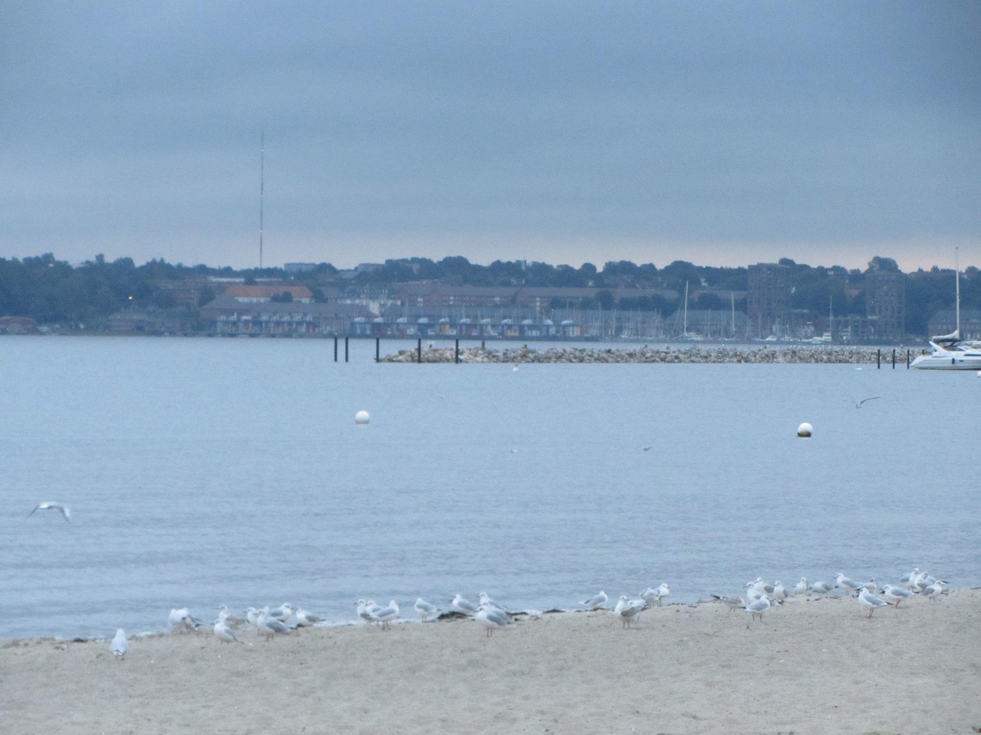 Trotzdem ist es immer wieder faszinierend am Meer zu sein -  Wunderschöne Panoramen wohin das Auge reicht. ©Jana Zoricic