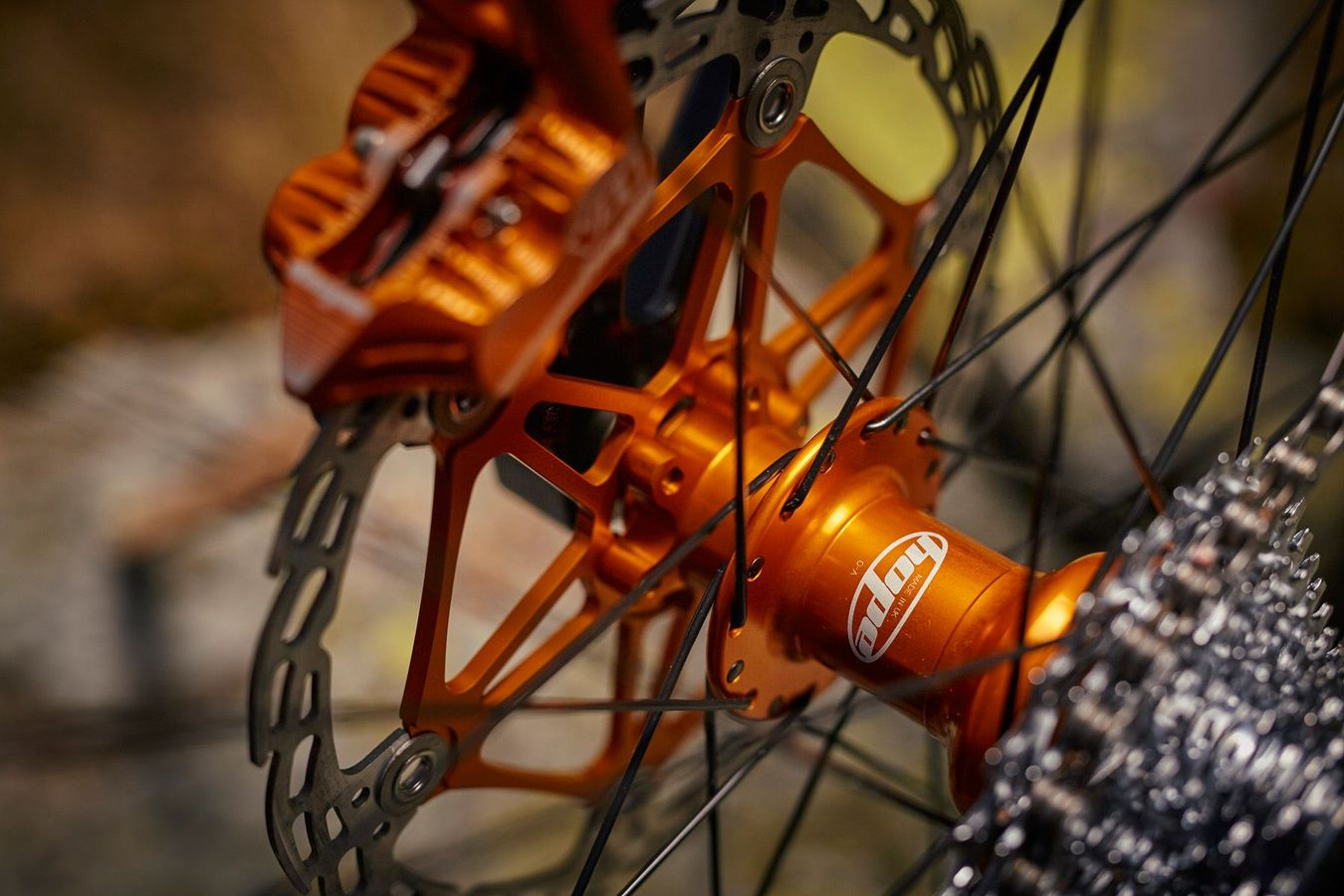 Orange 324