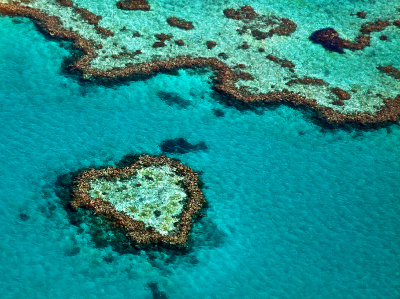 And the Great Barrier Reef... Photo: iStock