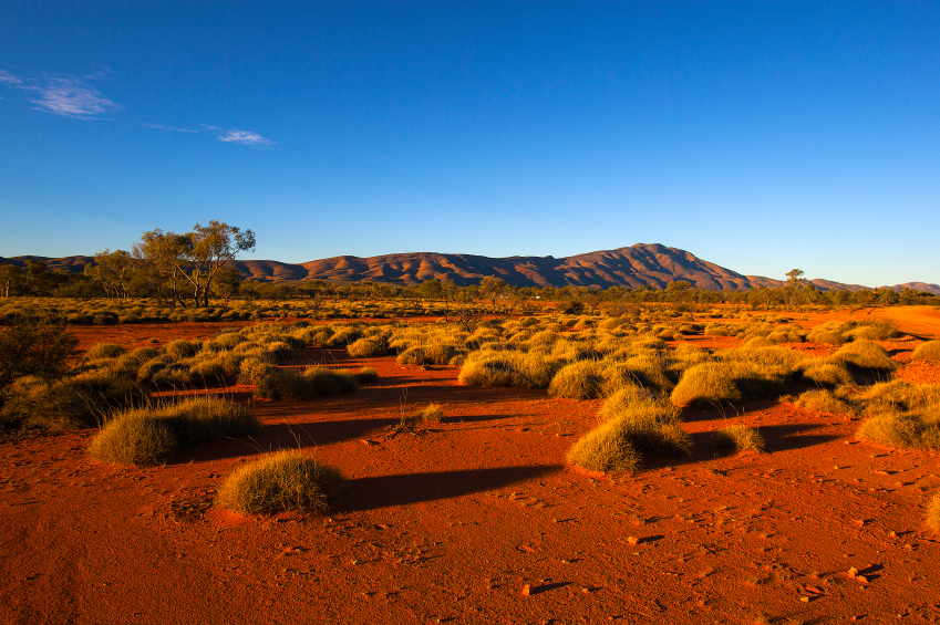 The iconic Outback... Photo: iStock