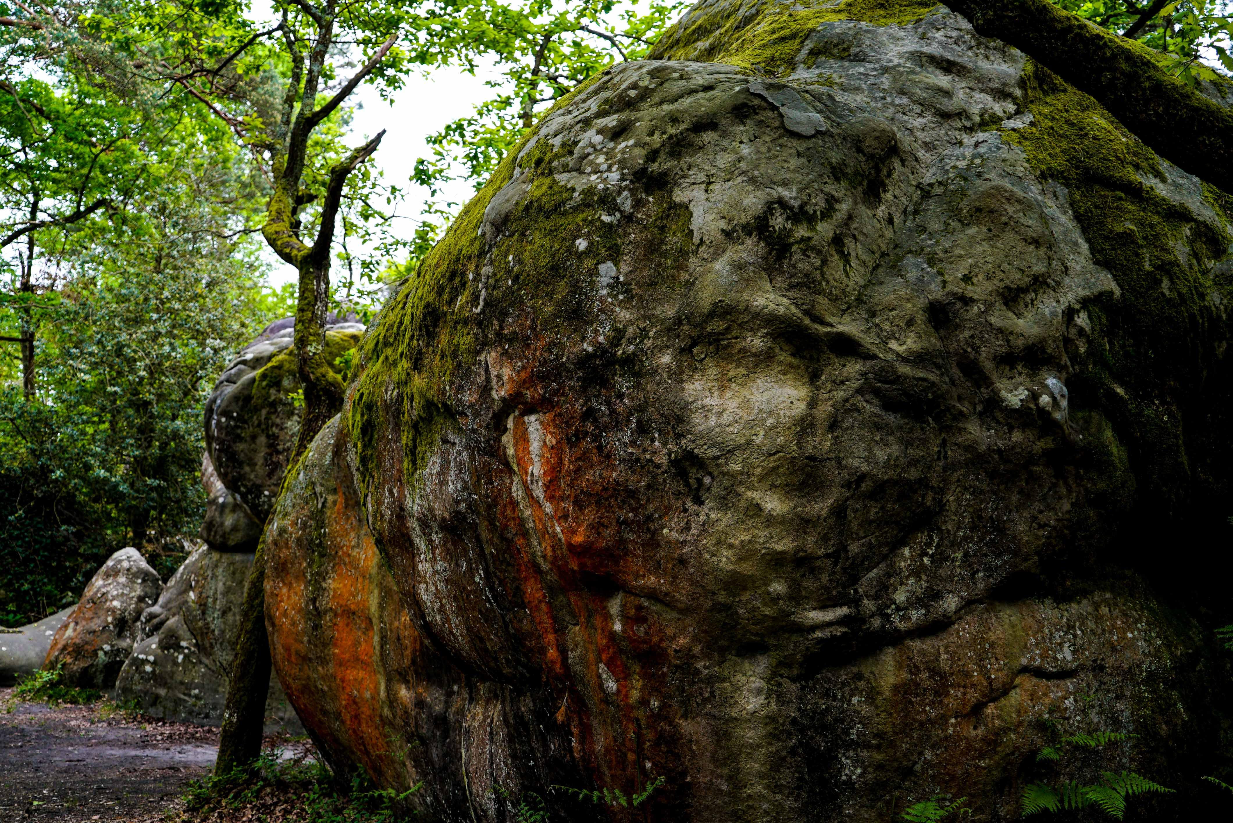 fontainbleau climbing 2016 mike brindley-116