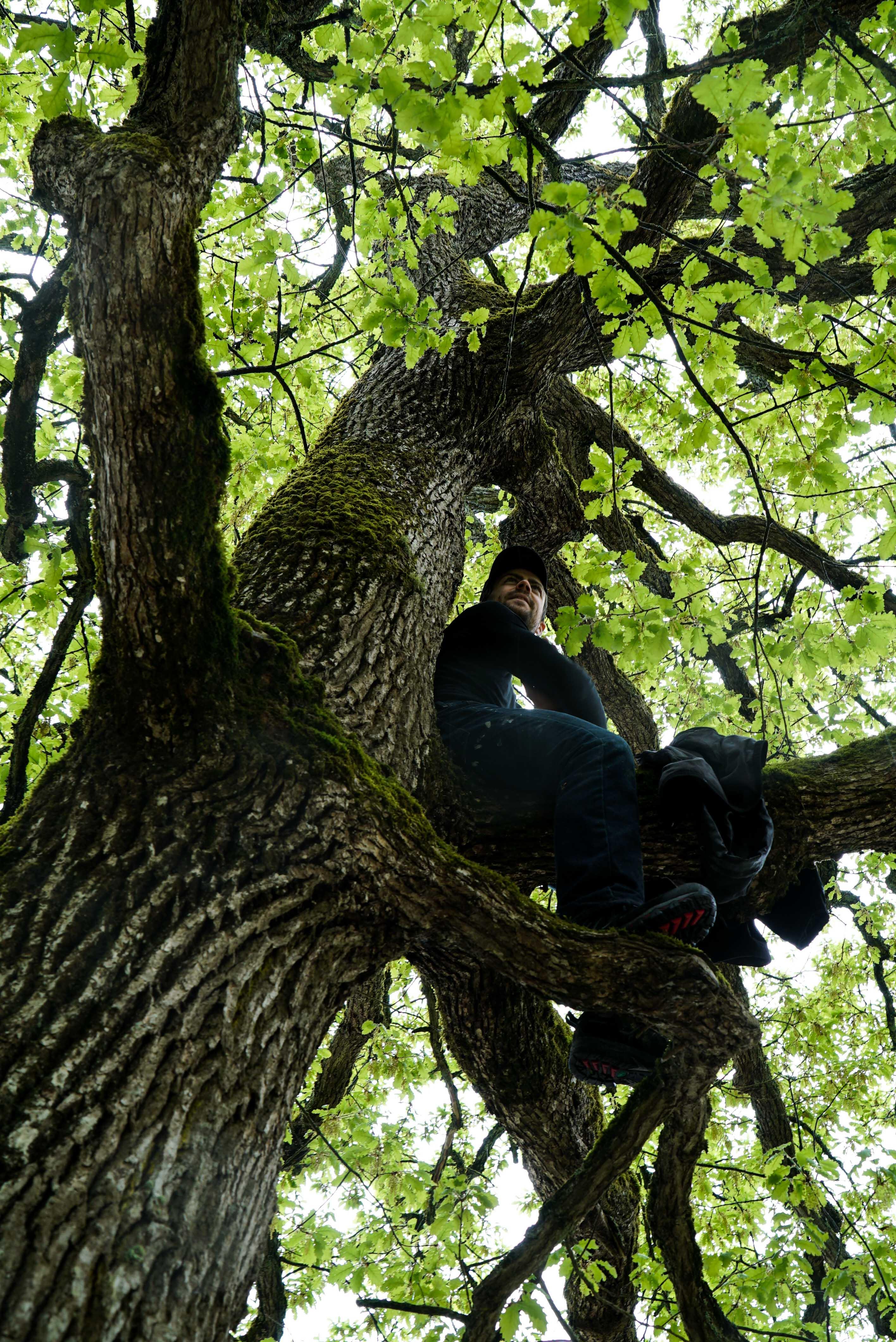 fontainbleau climbing 2016 mike brindley-46