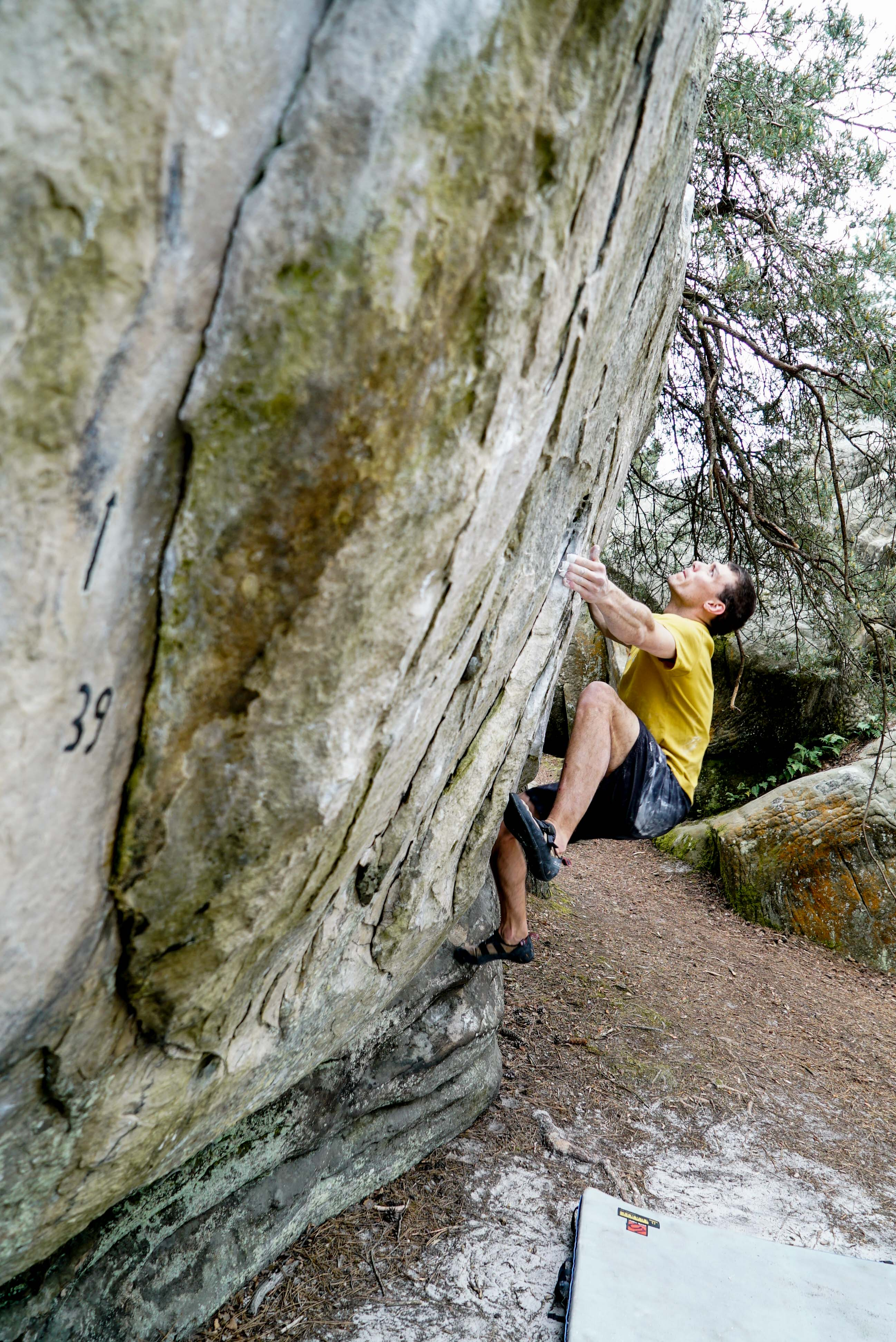 fontainbleau climbing 2016 mike brindley-5