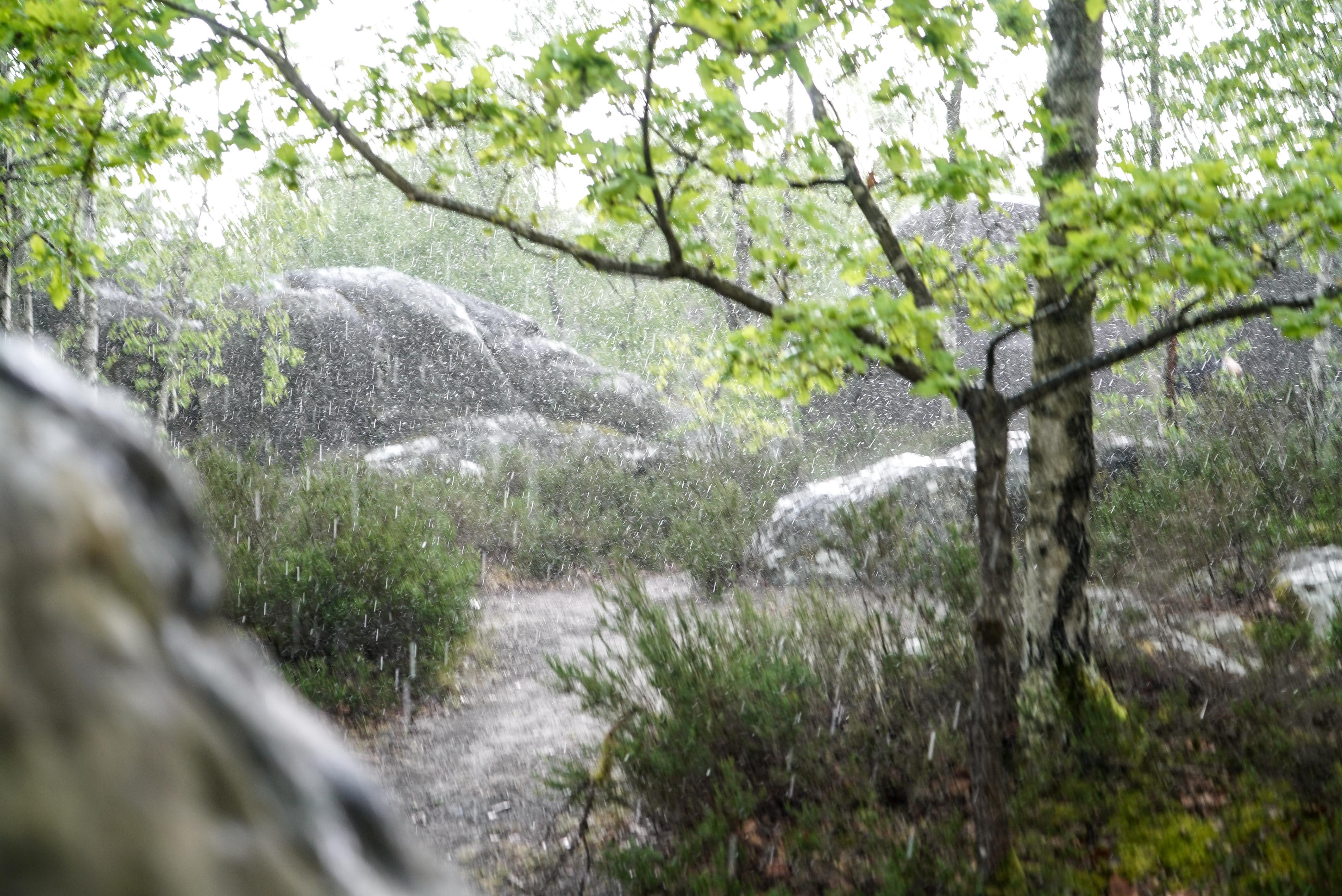 fontainbleau climbing 2016 mike brindley-88