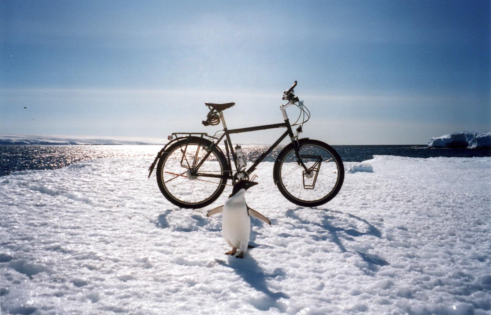 Großartig Upcycling Fahrrad Sammlung Von Free Wheels East | Mit Dem Durch
