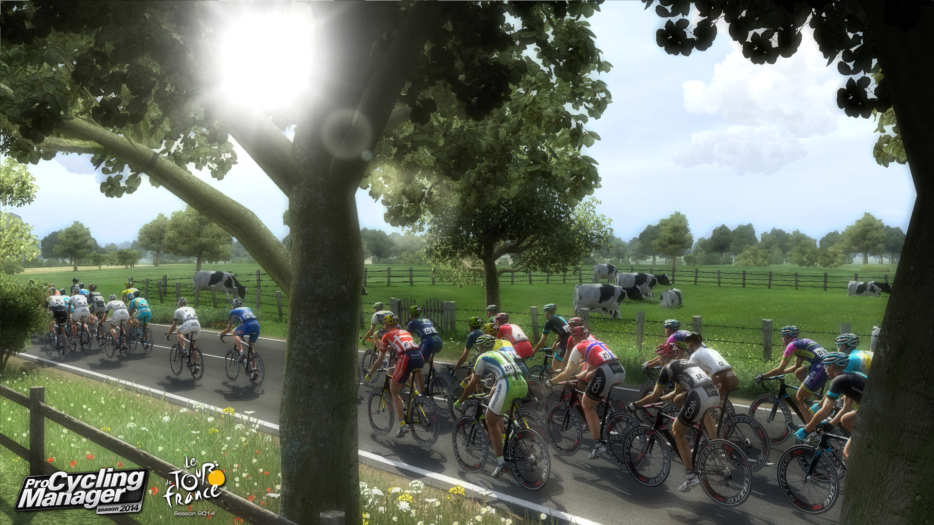 Tour de France, Simulation